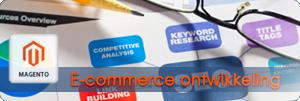 e-commerce ontwikkeling